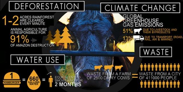 cowspiracy1-1.jpg