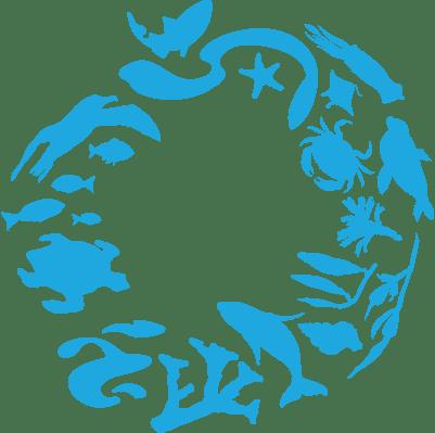 icon-logo-min